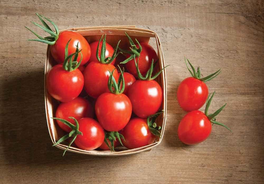 مصرف گوجه می تواند باعث بروز یاتشدید سردردهای میگرنی شو