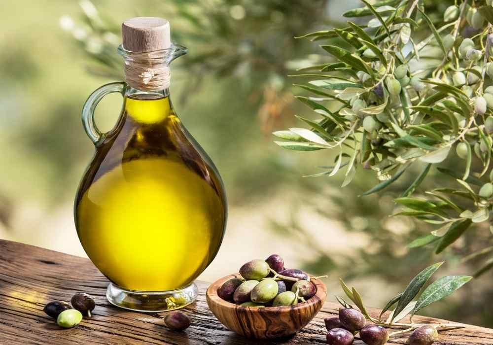 روغن زیتون با داشتن چربی سالم درحفظ تعادل هورمونهای تیروئید تعادل ایجاد میکند