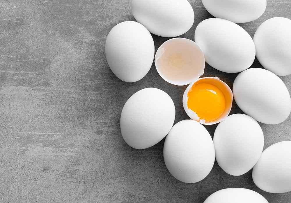 تخم مرغ رابایدمنبع پروتئین وکلسیم وپتاسیم وآهن دانست