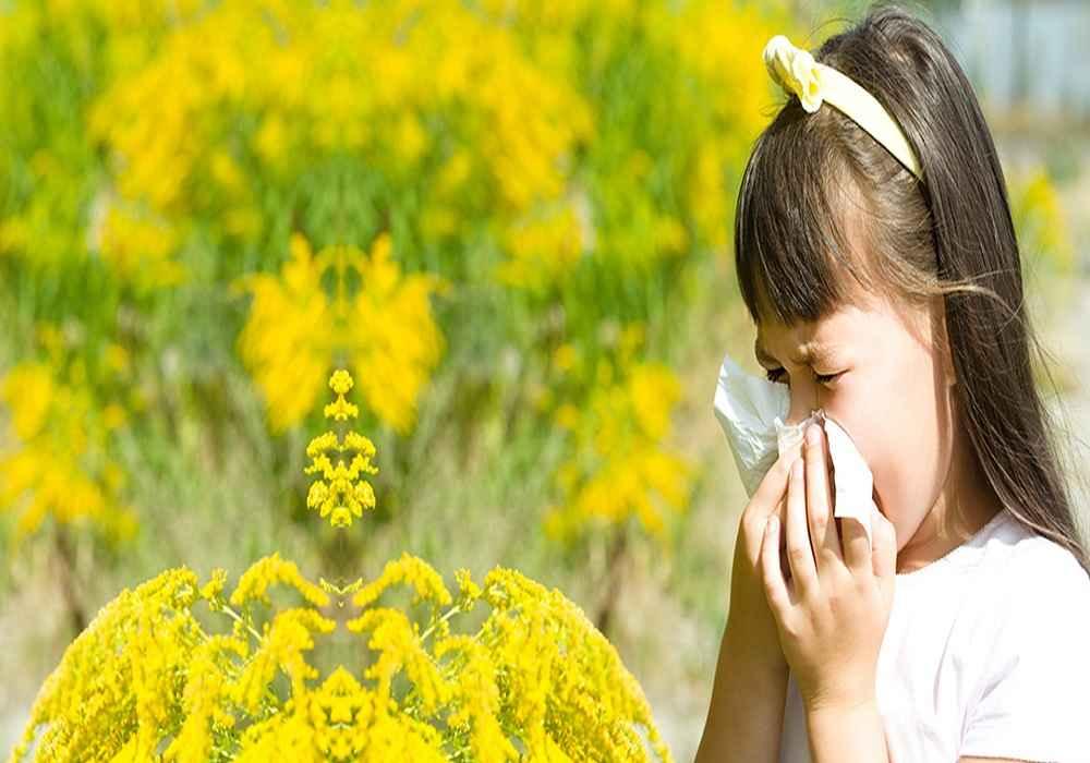 آلرژی یکی از بیماریهای شایع فصل تابستان است
